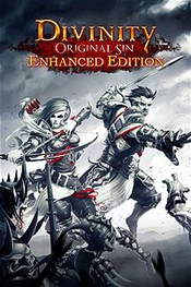 Divinity original sin enhanced edition game icon