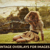 Creativemarket_5_Vintage_Overlays_for_Images_V2_90000_icon