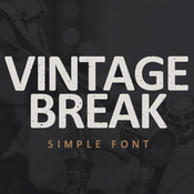 Creativemarket_VINTAGE_BREAK_237405_icon.jpg