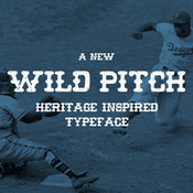 Creativemarket_wild_pitch_185598_icon.jpg