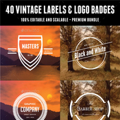 40 vintage labels and logo badges bundle 12287168 icon