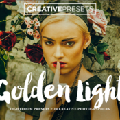 Golden light lightroom presets 362925 icon