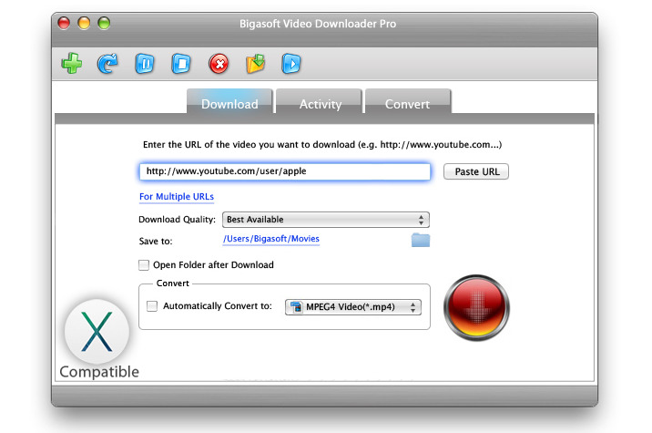 bigasoft_video_downloader_pro_31176019