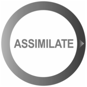 Assimilate scratch icon
