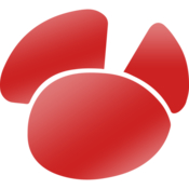 Navicat for oracle database management gui icon
