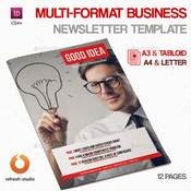 Multi format business newsletter template plantilla indd icon