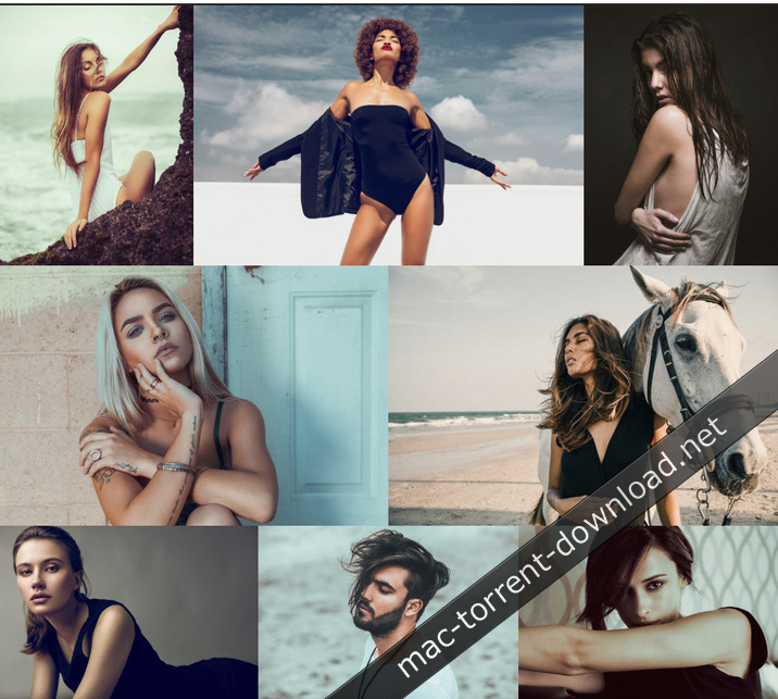 The Preset Factory – Editorial Collection for Adobe
