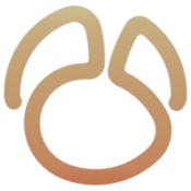 Navicat 12 for mariadb icon