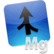 Araxis Merge Pro two and three way visual file comparison icon